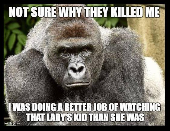 Gorilla and Kid